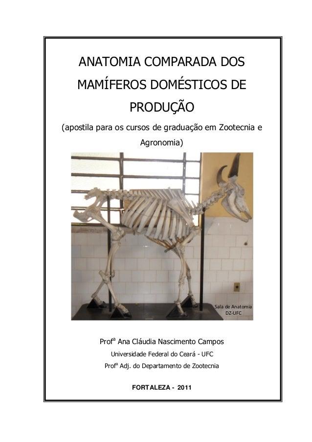 ANATOMIA COMPARADA DOS MAMÍFEROS DOMÉSTICOS DE PRODUÇÃO (apostila para os cursos de graduação em Zootecnia e Agronomia) Pr...