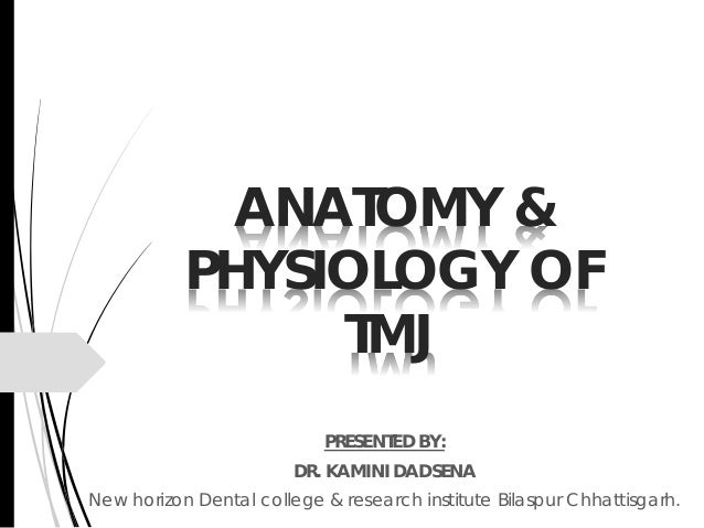 1 Anatomy Amp Physiology Of Tmj