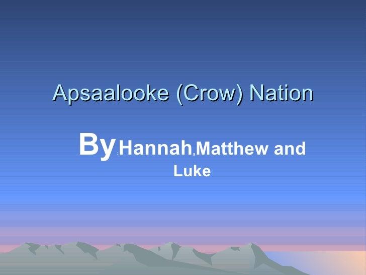 By : Hannah , Matthew and Luke Apsaalooke (Crow) Nation