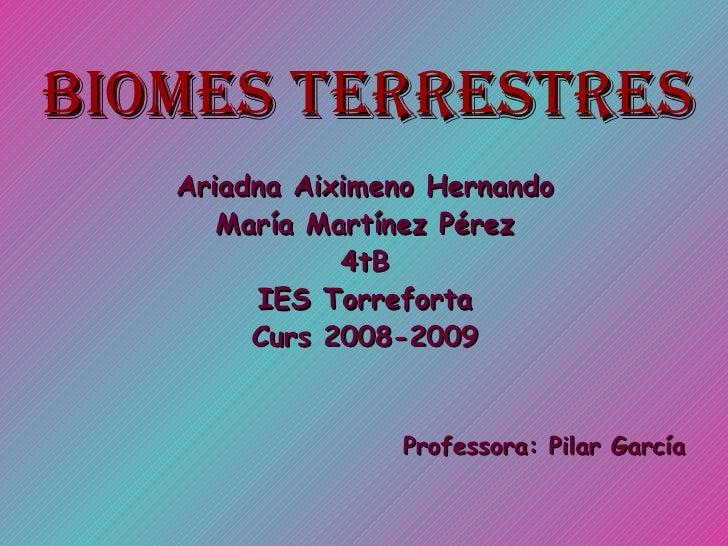 <ul><li>Ariadna Aiximeno Hernando </li></ul><ul><li>María Martínez Pérez </li></ul><ul><li>4tB </li></ul><ul><li>IES Torre...