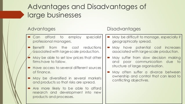 disadvantages of small scale business