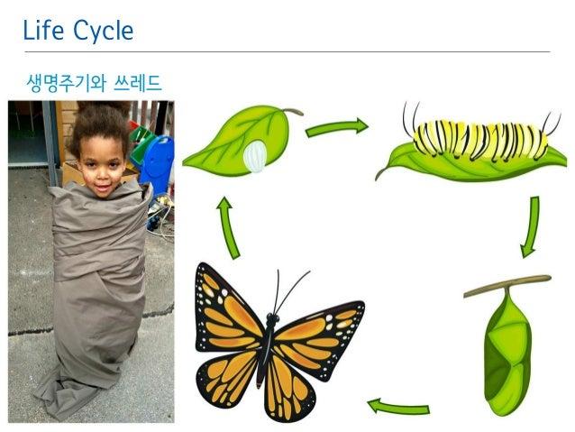 Life Cycle  생명주기와 쓰레드