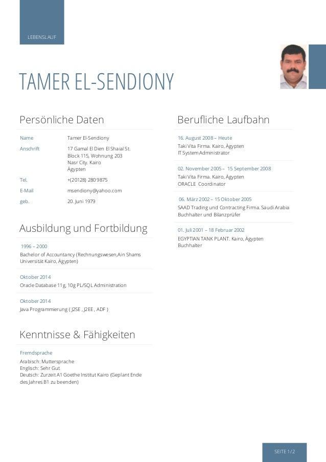 Lebenslauf Tamer El Sendiony 3