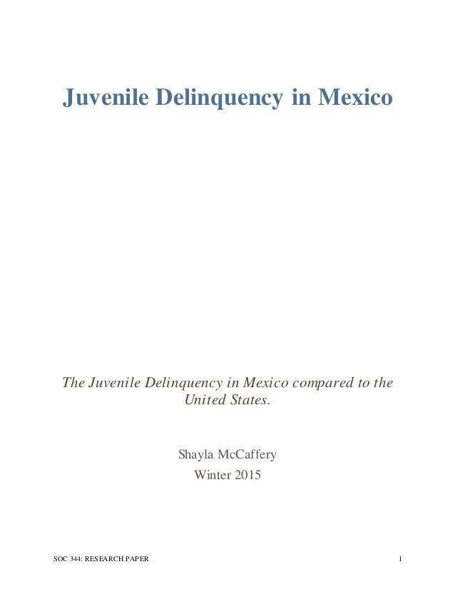 Juvenile Delinquency Research Paper Ideas - image 5