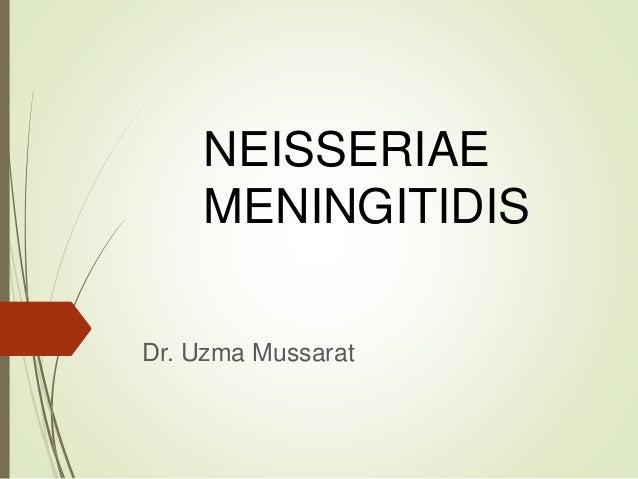 NEISSERIAE MENINGITIDIS Dr. Uzma Mussarat