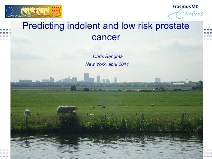 Predicting indolent and low risk prostate cancer Chris Bangma  New York, april 2011