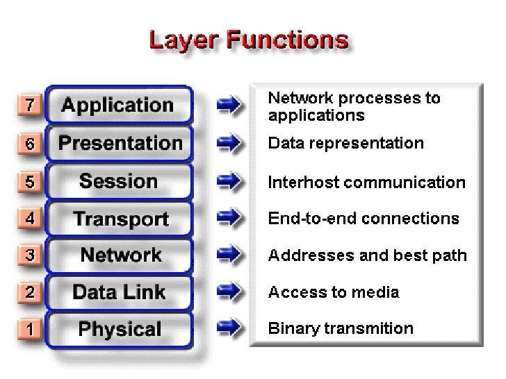 Presentation Layer                     The Presentation Layer manipulates the                     representation of data f...