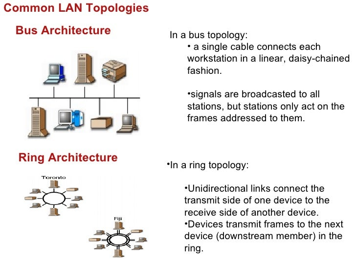 Common LAN Topologies Bus Architecture       In a bus topology:                            • a single cable connects each ...