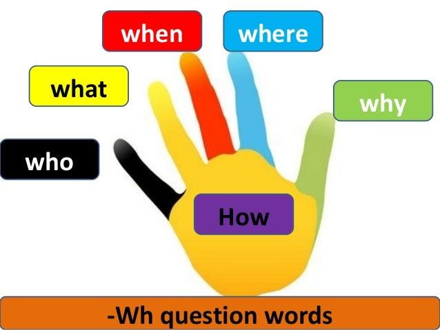 1ºbb question words