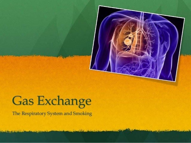 Gas Exchange The Respiratory System and Smoking