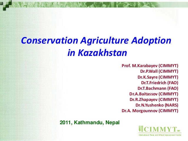 CIMMYTMR International Maize and Wheat Improvement Center Conservation Agriculture Adoption in Kazakhstan Prof. M.Karabaye...