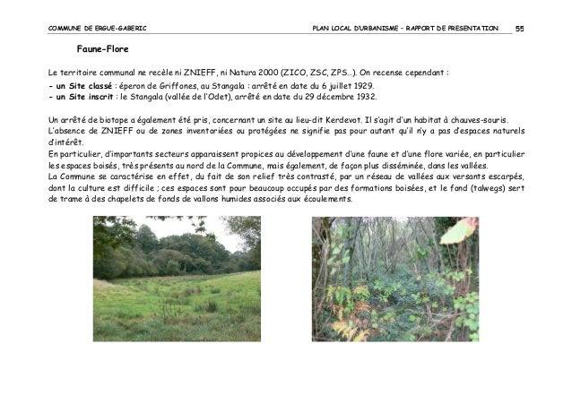 COMMUNE DE ERGUE-GABERIC  PLAN LOCAL D'URBANISME – RAPPORT DE PRESENTATION  55  Faune-Flore Le territoire communal ne recè...