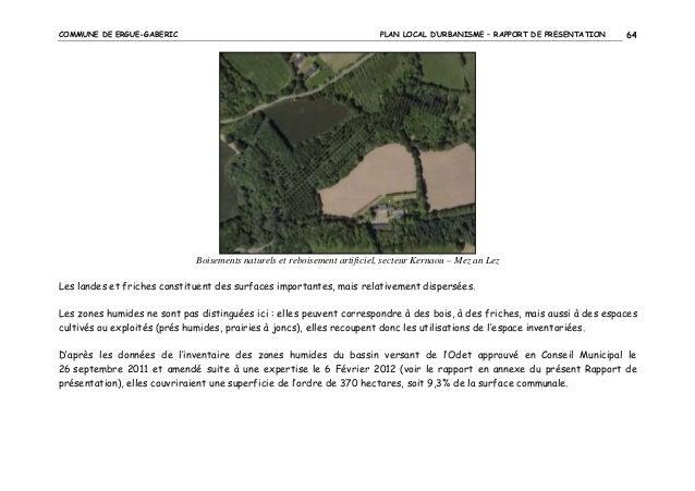 COMMUNE DE ERGUE-GABERIC  PLAN LOCAL D'URBANISME – RAPPORT DE PRESENTATION  64  Boisements naturels et reboisement artific...