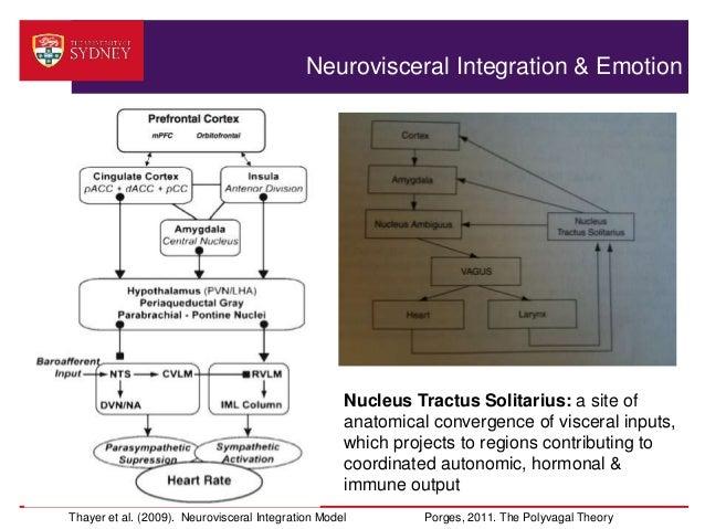 emotional integration Post-determined emotion: motor action retrospectively modulates  retrospective  emotional integration between the visual and somatic events.