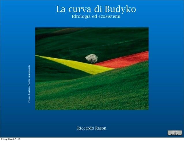 La curva di Budyko                                                              Idrologia ed ecosistemi                   ...