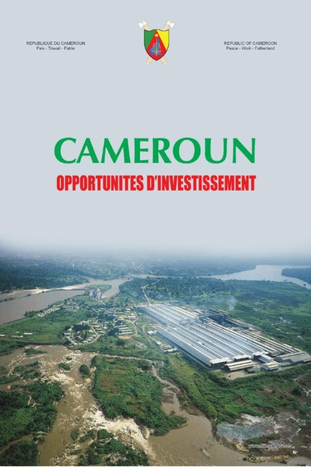 Une Afrique en miniatureLe Cameroun se situe au cœur des régions géographiques del'Afrique Occidentale, Centrale et Septen...