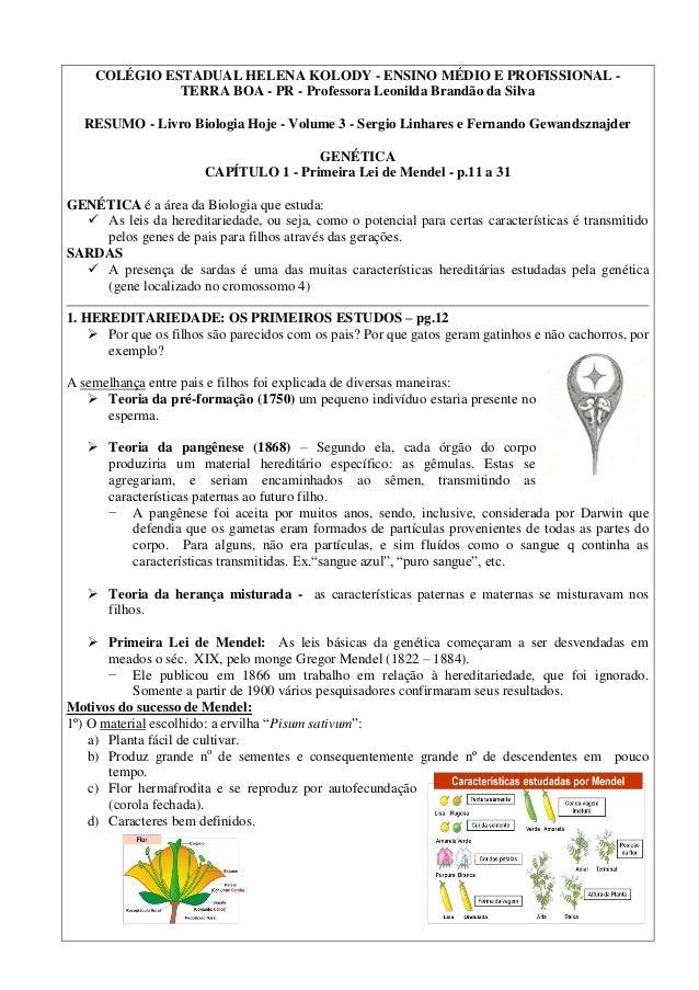 COLÉGIO ESTADUAL HELENA KOLODY - ENSINO MÉDIO E PROFISSIONAL - TERRA BOA - PR - Professora Leonilda Brandão da Silva RESUM...