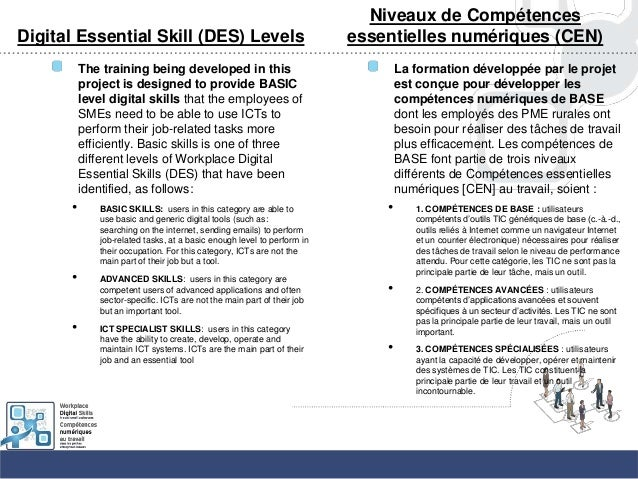 Digital Essential Skill (DES) LevelsThe training being developed in thisproject is designed to provide BASIClevel digital ...