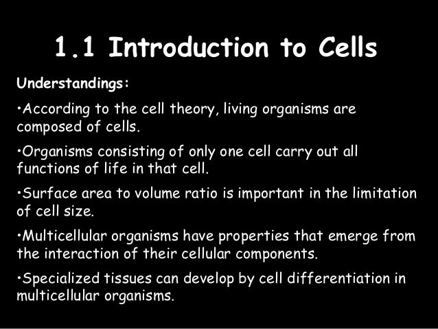 introduction to biology i syllabus 2018-6-19 syllabus for bio131: introduction to computational biology spring 2018 course structure programming assignments (40%) programming assignments are the majority of the points.