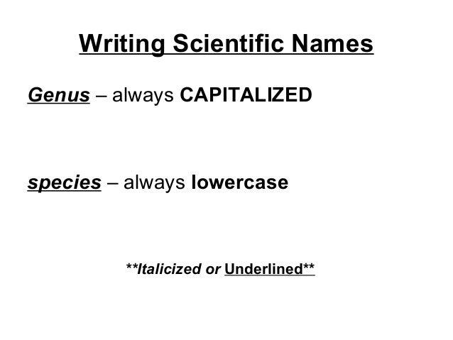 Familiaris Consortio Essay Writer – 145671