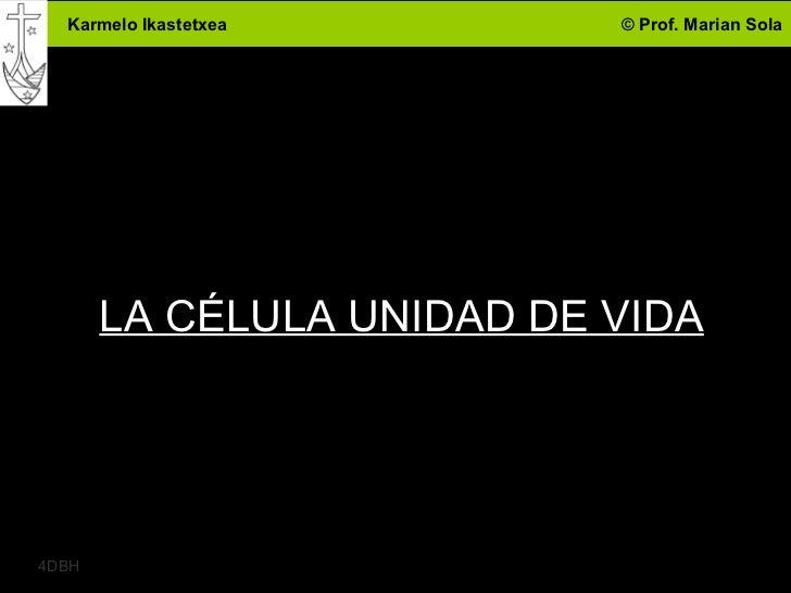 Karmelo Ikastetxea       © Prof. Marian Sola       LA CÉLULA UNIDAD DE VIDA                                        14DBH
