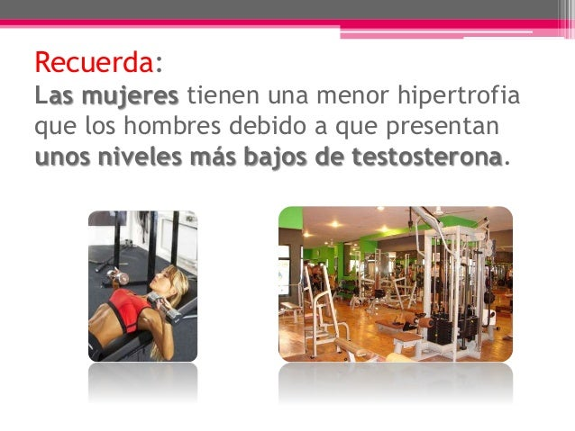  VELOCIDAD es la movilidad del deportista, fuerza aplicada, resistencia y técnica.