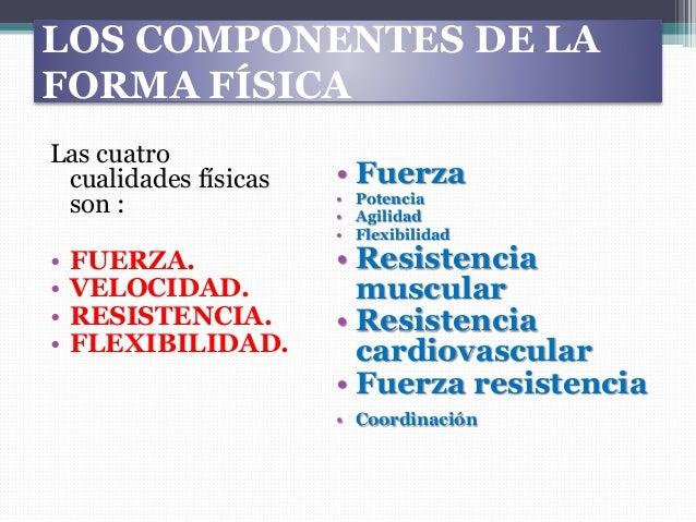 Cualidades físicas y sus métodos Slide 3