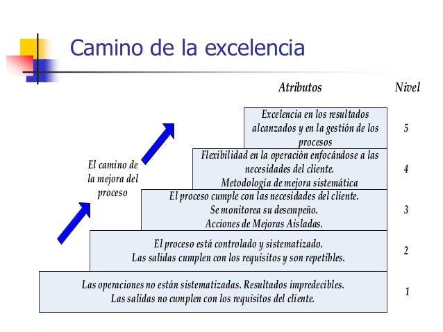 Ing. Ind. Leonardo Silva Franco, MSPP 258 Entre otras razones: Incumplimiento de especificaciones. Problemas y/o quejas ...