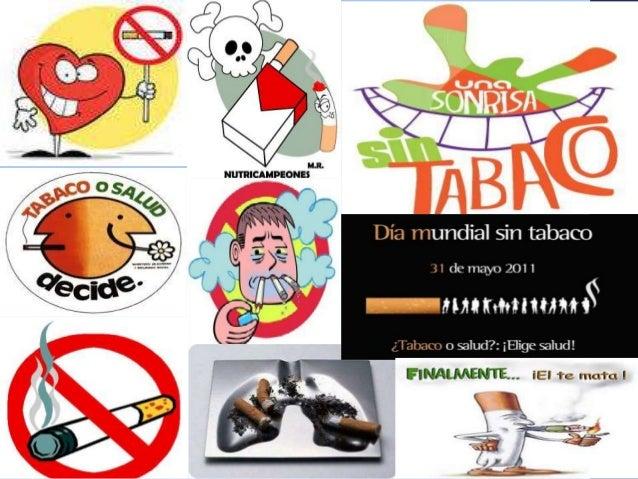 1 d 17 dia mundial sin tabaco for Cuarto dia sin fumar