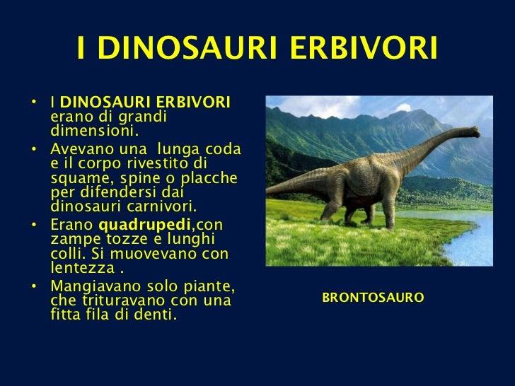<ul><li>I  DINOSAURI ERBIVORI  erano di grandi dimensioni.  </li></ul><ul><li>Avevano una  lunga coda e il corpo rivestito...