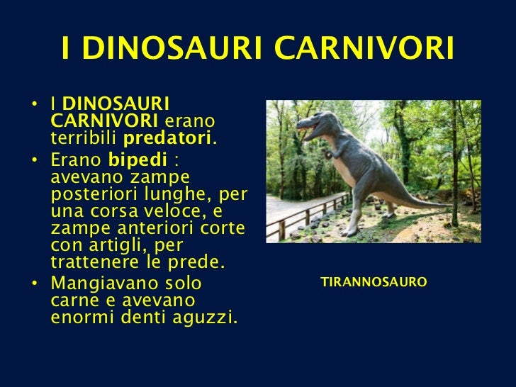 <ul><li>I  DINOSAURI CARNIVORI  erano terribili  predatori . </li></ul><ul><li>Erano  bipedi  : avevano zampe posteriori l...