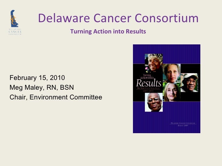 Turning Action into Results February 15, 2010 Meg Maley, RN, BSN  Chair, Environment Committee Delaware Cancer Consortium