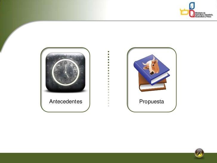 1 diagnostico inicial politicas Slide 3