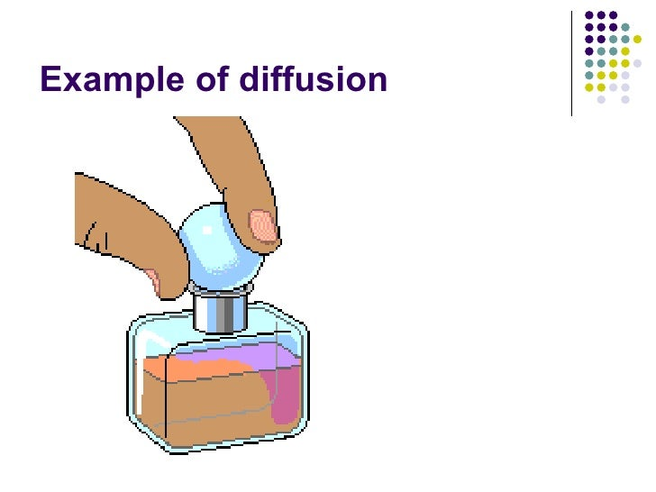 Chapter 3 Movement Of Substances Lesson 1 Diffusion And Osmosis