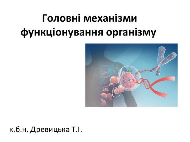 Головні механізми функціонування організму к.б.н. Древицька Т.І.