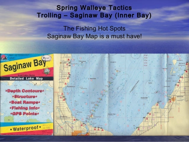 1 d r sports walleye seminar 2013 spring methods for Saginaw bay fishing