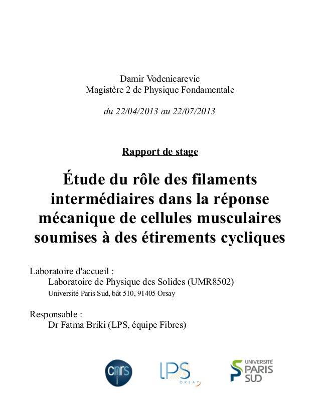 Damir Vodenicarevic Magistère 2 de Physique Fondamentale du 22/04/2013 au 22/07/2013 Rapport de stage Étude du rôle des fi...