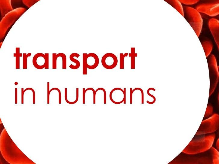 transportin humans