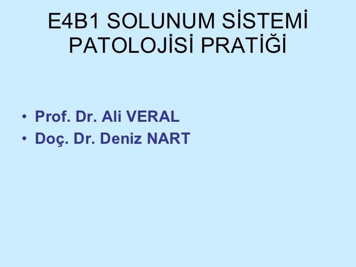 E4B1 SOLUNUM SİSTEMİ PATOLOJİSİ PRATİĞİ <ul><li>Prof. Dr. Ali VERAL </li></ul><ul><li>Doç. Dr. Deniz NART </li></ul>
