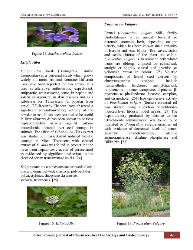 review of pharmacological activities of michelia alba Journal of chinese integrative medicine:  and antiplasmodial activities this review presents first time  of michelia alba flowers by gas.