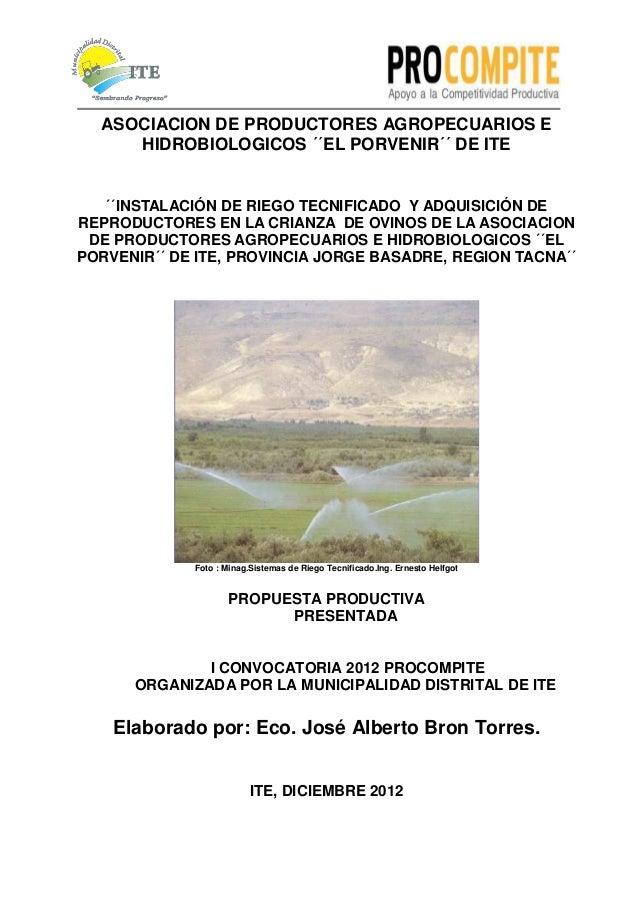 ASOCIACION DE PRODUCTORES AGROPECUARIOS E     HIDROBIOLOGICOS ´´EL PORVENIR´´ DE ITE   ´´INSTALACIÓN DE RIEGO TECNIFICADO ...