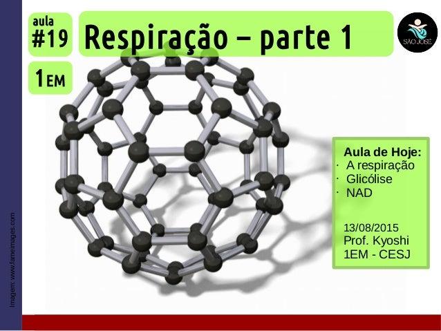 Imagem:www.fameimages.com Aula de Hoje: • A respiração • Glicólise • NAD Respiração – parte 1 1EM #19 aula 13/08/2015 Prof...