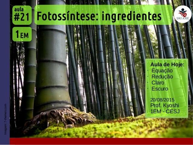 Imagem:7-themes.com Aula de Hoje: • Equação • Redução • Claro • Escuro Fotossíntese: ingredientes 1EM #21 aula 20/08/2015 ...