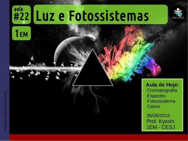 Imagem:ultradownloads.com.br Aula de Hoje: • Cromatografia • Espectro • Fotossistema • Calvin Luz e Fotossistemas 1EM #22 ...