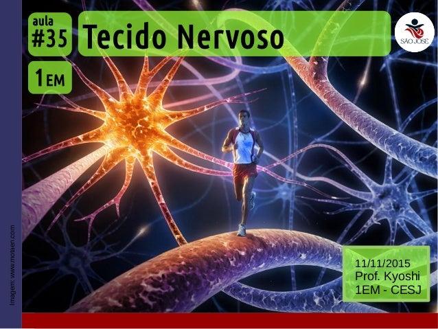 Imagem:www.motaen.com Tecido Nervoso 1EM #35 aula 11/11/2015 Prof. Kyoshi 1EM - CESJ