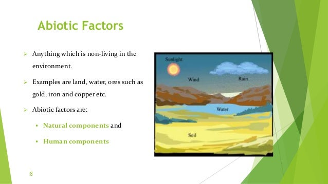 Abiotic Factors  Anything which is non-living in the environment.  Examples are land, water, ores such as gold, iron and...