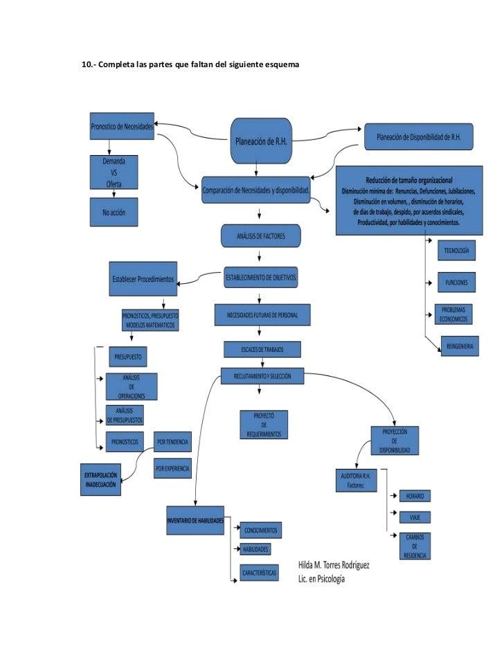10.- Completa las partes que faltan del siguiente esquema