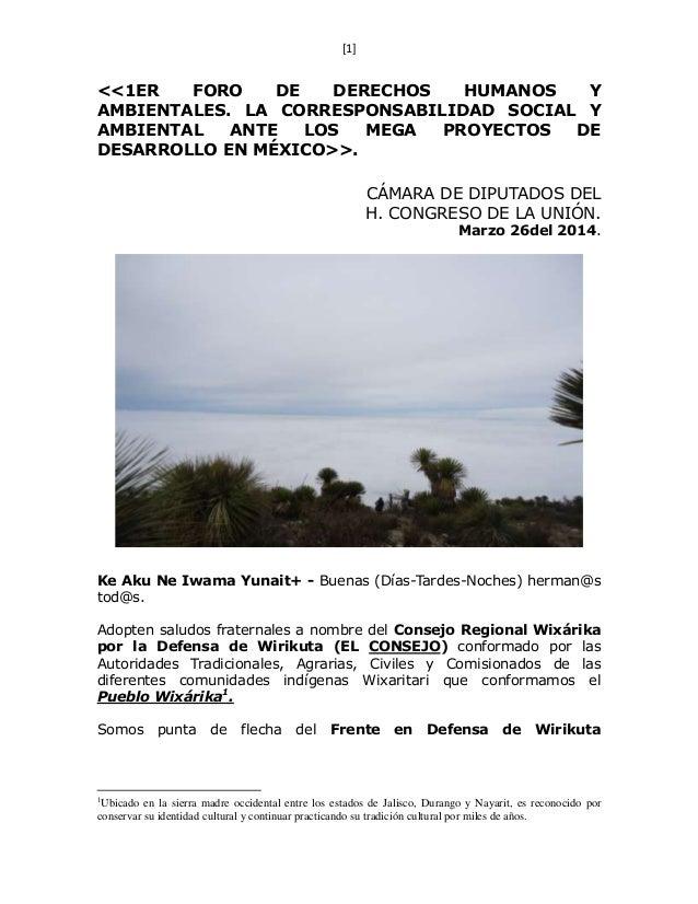[1] <<1ER FORO DE DERECHOS HUMANOS Y AMBIENTALES. LA CORRESPONSABILIDAD SOCIAL Y AMBIENTAL ANTE LOS MEGA PROYECTOS DE DESA...