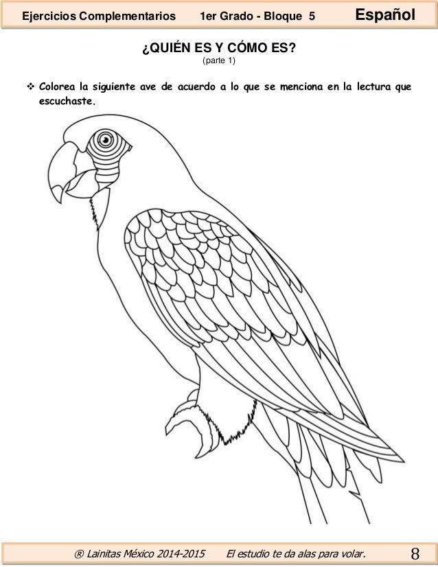 Hermosa Pájaros Enojados Espacio Para Colorear Páginas De Todas Las ...