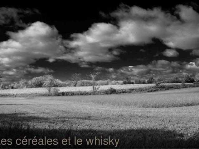 Les céréales et le whisky